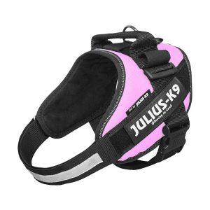 Julius K9 IDC powertuig roze baby 1 - maat 4 met tekstlabels die gepersonaliseerd kunnen worden door K9-Label