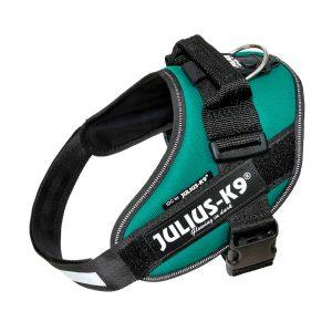 Julius IDC Powertuig kleur Donker Groen maat Maat 0 met tekstlabels die gepersonaliseerd kunnen worden door K9-label