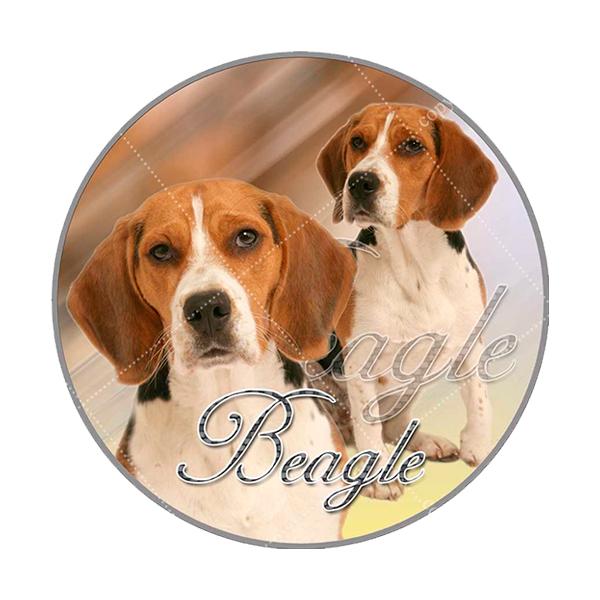 75ab698bf18 Sticker Beagle, deze is ongeveer 10 cm in doorsnee